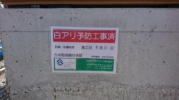 DSC_4859.JPG